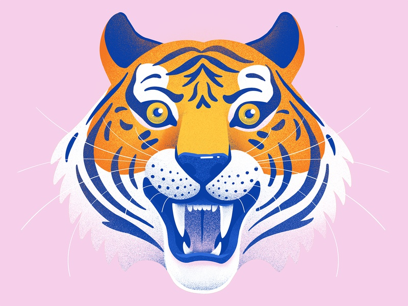 Tiger King wildlife illustration wildlife wildcat procreate app procreateapp procreate mouth face animal wild savage roar teeth illustration big cats big cat