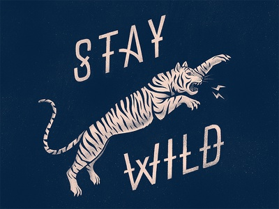 Stay wild flat illustration vintage jungle stripes roar roaring teeth attack jump animal savage wild two colors two tone procreate hand made tiger