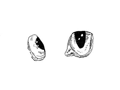 Cat Eyes (from Sandman)