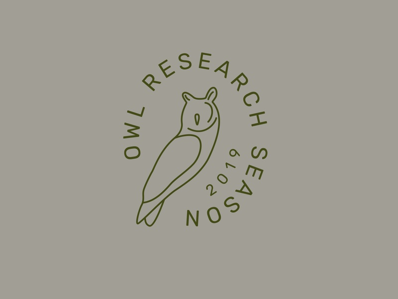 Owl Research Season green logo graphic design typography iconography illustration owl