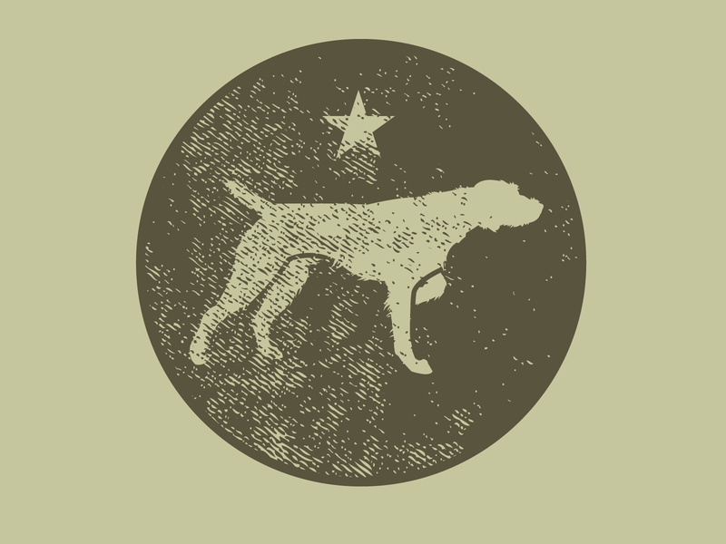 birddog bird branding sports illustrator vector illustration animal design star hunting dog pointer