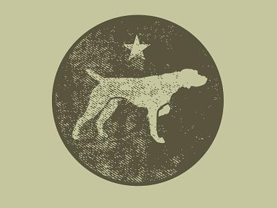 birddog bird branding sports illustrator vector illustration animal design star hunting dog pointer