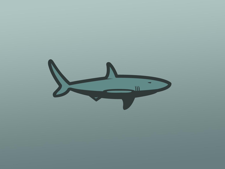 Shark animal logo flat vector illustration design illustrator fish shark