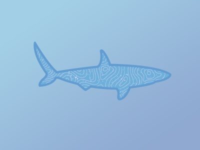 Topographic Shark distress topographic fish shark animal design illustration