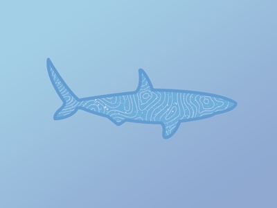Topographic Shark
