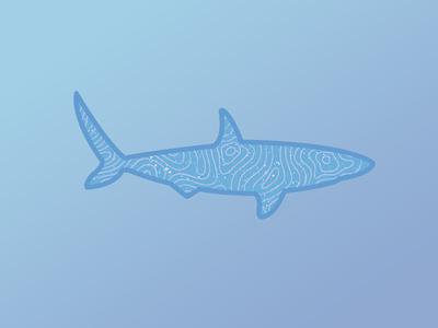 Topographic Shark