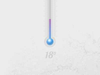 Thermometer thermometer