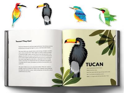 Colors in Flight design stickers spreads book birds