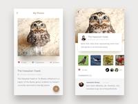 Birdgallery