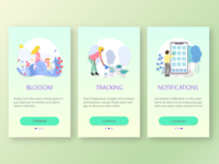 Splash screens for a product concept, Blossom.