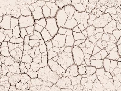 Dried dirt.  texture earth vector apple pencil ipad pro adobe draw