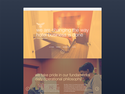 Hawkeye Hotels helvetica photography hotels web design web