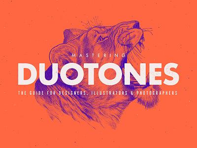 Mastering Duotones Skillshare Class vintage minimalist trend photoshop effect illustration tutorial animal typography duotone color