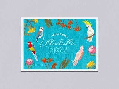 Adobe Live Ulladulla Postcard postcard ulludulla vector typography illustration