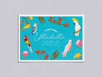 Adobe Live Ulladulla Postcard