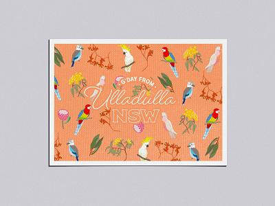 Adobe Live Ulladulla Postcard v2 postcard ulludulla typography vector illustration