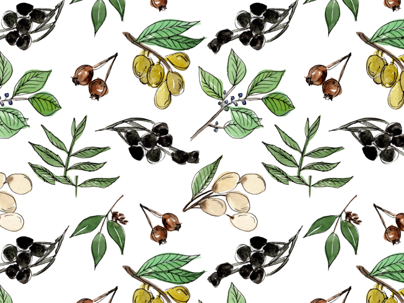 The Ranch leaves pattern library pattern design olive branch nature illustration pattern surface pattern surface pattern design surface design