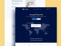 Global SMS Messaging ux ui landing web design interface