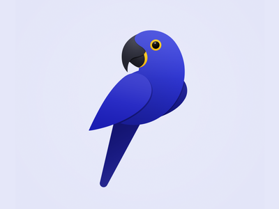 Hyacinth Macaw parrot onlyoly pet cute animal icon bird
