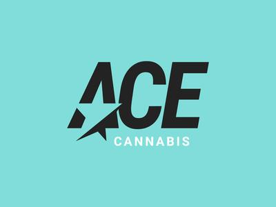 ACE, Concept 1