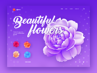 Illustrations for flowers shop