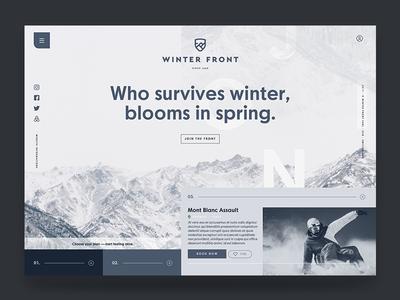 WINTER FRONT HOME grey winter sans cool palette monochrome minimal ux ui design web homepage