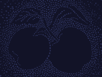 Panyolai Apple