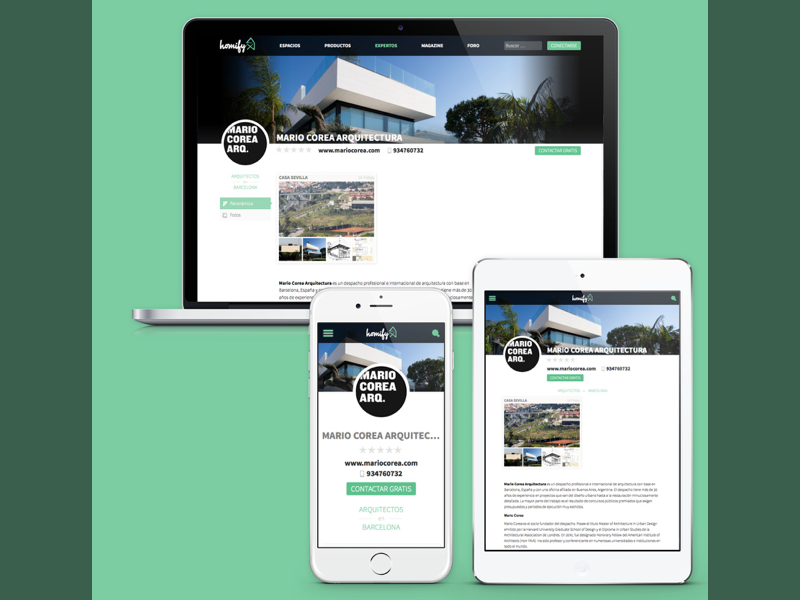 Homify Screenshot Template responsive design profile