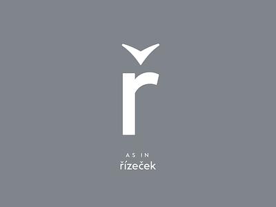 Czech typography: ř glyphs sketch type lettering typeface typeface design type design typography