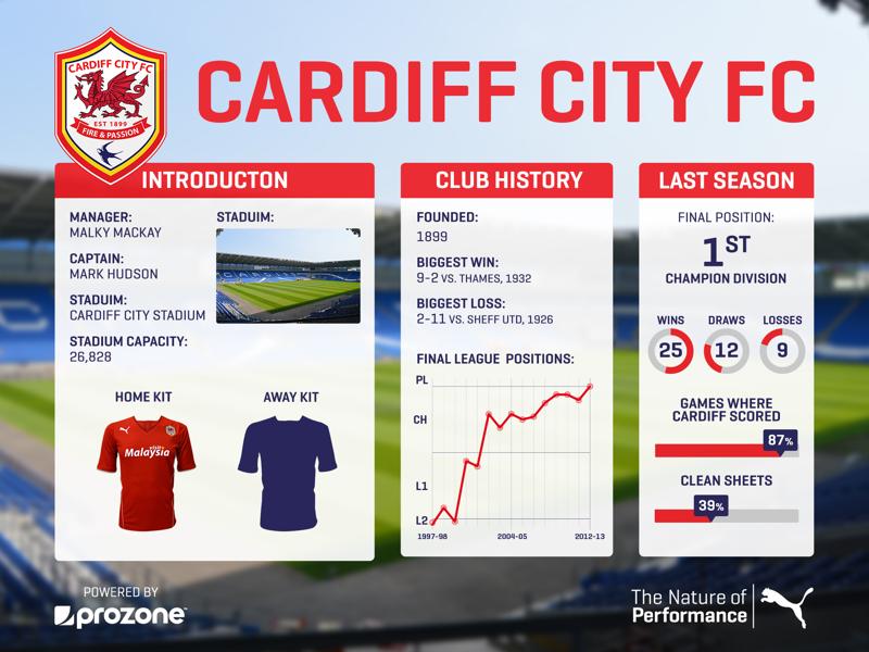 Cardiff City 2013 layout kit soccer season premier league graphs stats social media football