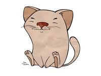 Сute cat