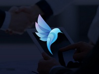 Blue Bird Logo Design