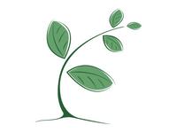 Freshstart Wellness Logo