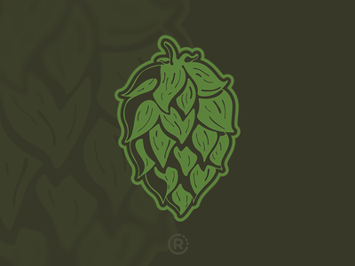 Hops homebrew craft beer illustration beer hops vector