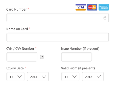 Payment form layout form payment credit card secure
