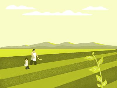 Rice Field Taiwan illustration