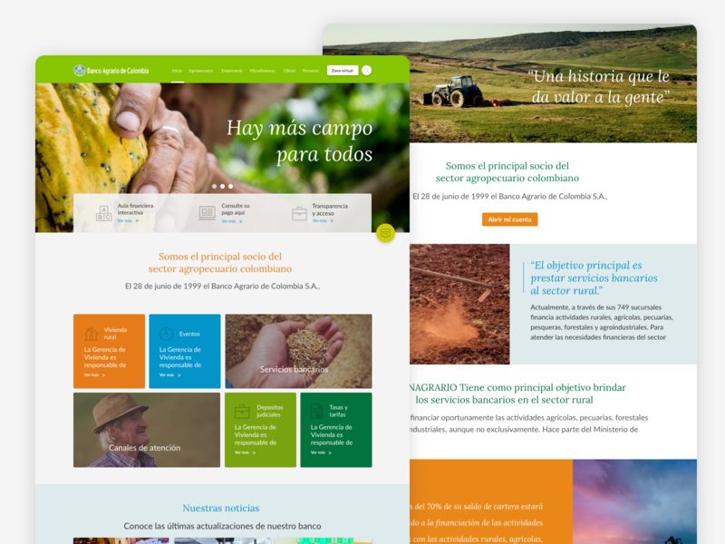 Banco Agrario Redesign colors ux ui website redesign
