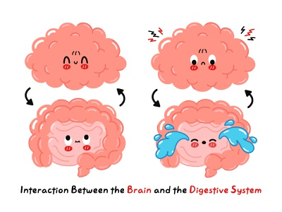 Interaction Between the Brain and the Digestive System gut brain infographic poster concept kawaii cute cartoon character illustration