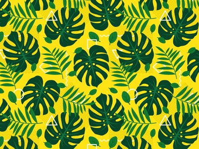 Tropical leafs and geometry pattern