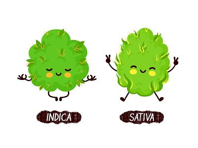 Indica vs sativa buddys strains funny medical cannabis green buds energy relax sativa indica 420 marijuana weed kawaii cartoon cute vector concept character illustration