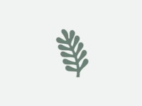 Lil' Plant Logo