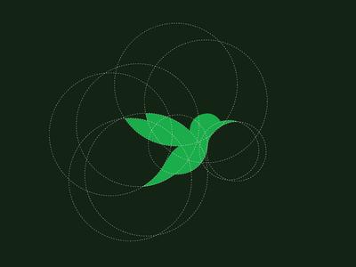 Humming Bird Grid