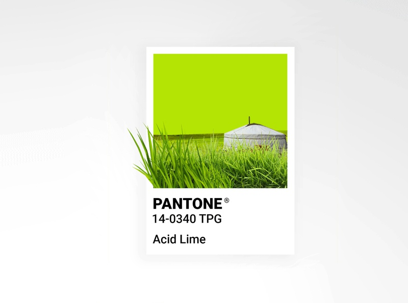 Pantone Acid Lime grass ger pantone2020 color palette summer color pantone art poster identity branding design