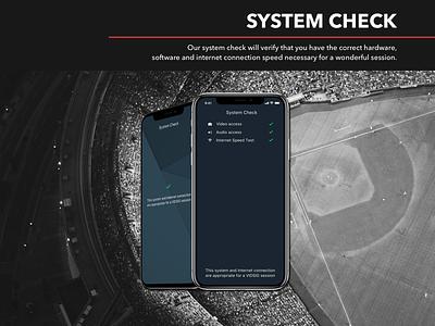Vidsig: system check typography system check branding logo design web-design ux interface ui