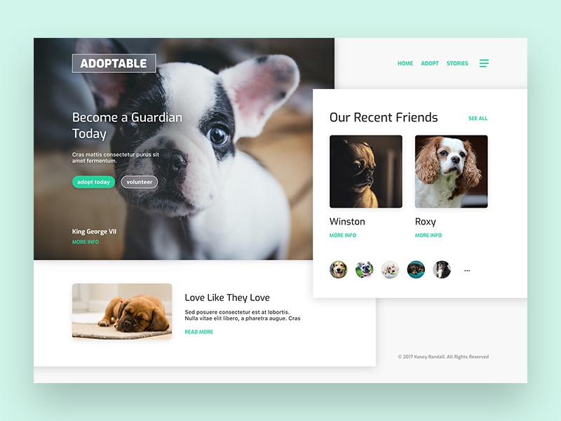 Adopt Today! branding design ui interface dogs rescue adopt animals photography hero landing page web design