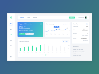 Daily UI Design: Pay Your Bill! concept icon clean user interface user experience web design design app material design typography mockup data visulization inspiration color dashboard ui dashboard ux design ui  ux design ux ui