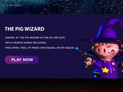 The Pig Wizard wizard pig web design branding