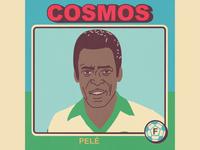 Pelé vector sport soccer portrait nasl illustration futbol football caricature