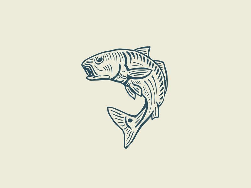Redfish outdoors illustration hand drawn branding fish logo fishing redfish