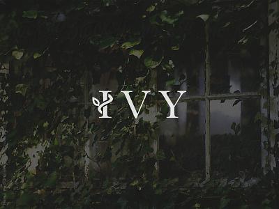 FEEDBACK: Ivy logo ivy typography wordmark brand identity